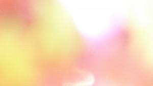tapeva- enero 2014 iva